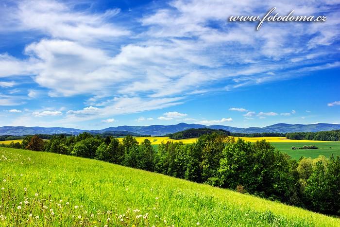 Rychlebské hory z vrchu Hrouda, asi kilometr severně od obce Velká Kraš, Velká Kraš, okres Jeseník, Olomoucký kraj, Česká republika