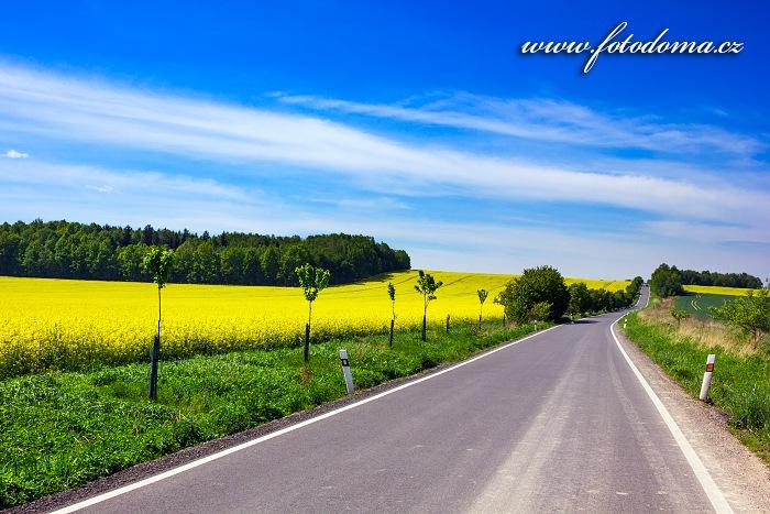 Silnice u obce Velká Kraš, okres Jeseník, Olomoucký kraj, Česká republika